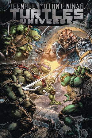 Teenage Mutant Ninja Turtles Universe Vol.4: Home