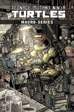 Teenage Mutant Ninja Turtles: Macroseries