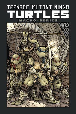 Teenage Mutant Ninja Turtles: Macroseries